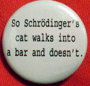 Schrödinger's Cat Paradox